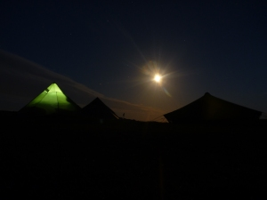 Moonlight Wild Camping Gower